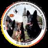 Bericht von der 2. SV-BSP für Rettungshunde aus Arnsberg